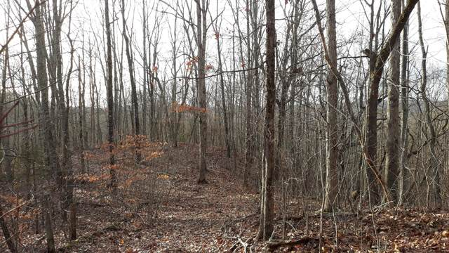 Lot #459 Crystal Springs Road, Rockwood, TN 37854 (#1140436) :: Billy Houston Group