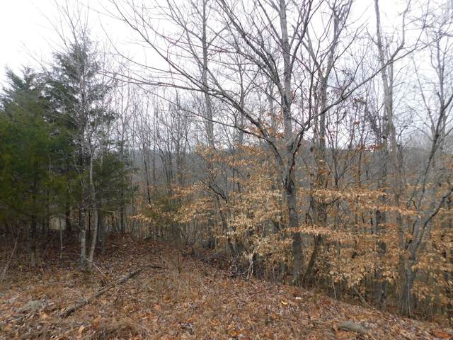 Lot 362 Morning Glory Rd, New Tazewell, TN 37825 (#1140446) :: Billy Houston Group