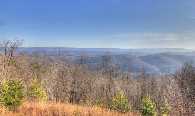 Lot 421 Chimney Rock Rd, New Tazewell, TN 37825 (#1140547) :: Billy Houston Group