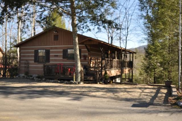 192 Cold Springs Trace, Townsend, TN 37882 (#1140590) :: Realty Executives Associates Main Street