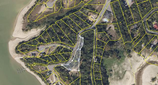 Lot 101 Sanctuary Shores Way, Sevierville, TN 37876 (#1140681) :: Catrina Foster Group