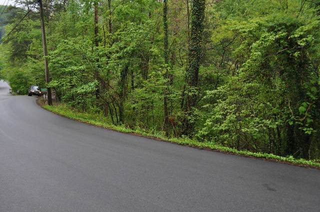 Lot 3 Walker Trail Tr, Pigeon Forge, TN 37876 (#1140735) :: The Terrell Team