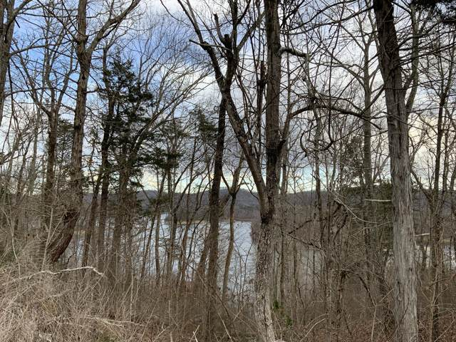 Lot 264 Lakeview Drive, Sharps Chapel, TN 37866 (#1140898) :: Billy Houston Group