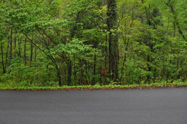 Lot 4 Walker Tr, Pigeon Forge, TN 37876 (#1140899) :: The Terrell Team