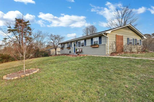 1704 S Hills Drive, Knoxville, TN 37920 (#1141076) :: Realty Executives Associates Main Street