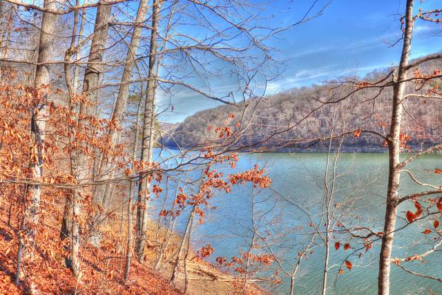 Lot 844 Landmark Drive, New Tazewell, TN 37825 (#1141133) :: Billy Houston Group