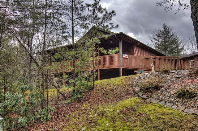 207 Cobblestone Drive, Townsend, TN 37882 (#1141257) :: Billy Houston Group