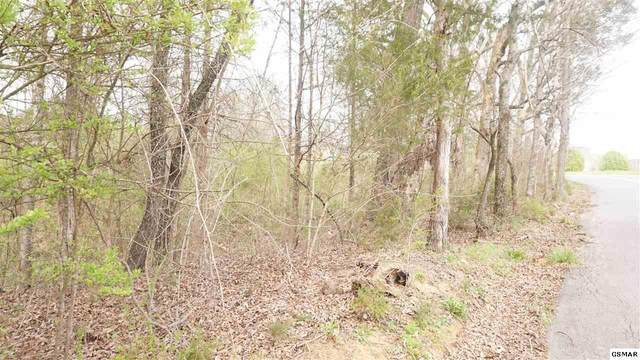 Lot 13 Flatwood Rd, Sevierville, TN 37862 (#1141381) :: Catrina Foster Group