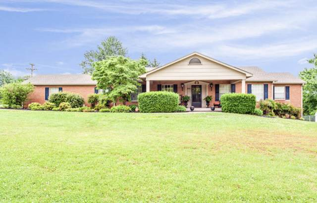 7536 Halls View Rd, Knoxville, TN 37938 (#1141487) :: Catrina Foster Group