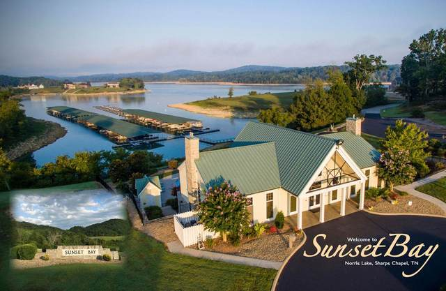 Swan Song Tr, Sharps Chapel, TN 37866 (#1141492) :: The Cook Team