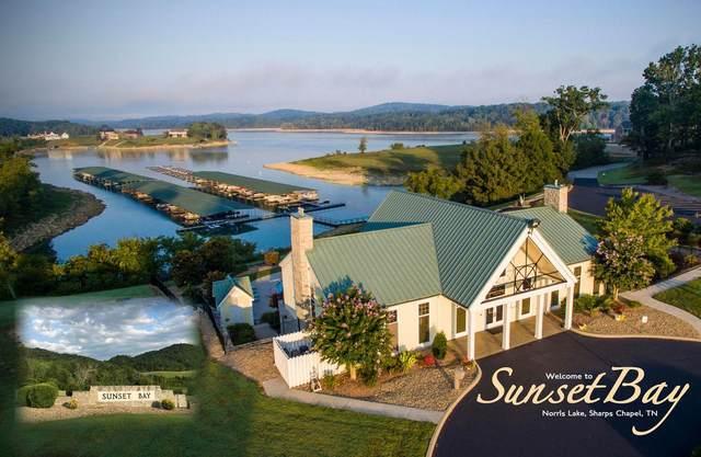 Swan Song Tr, Sharps Chapel, TN 37866 (#1141492) :: Billy Houston Group