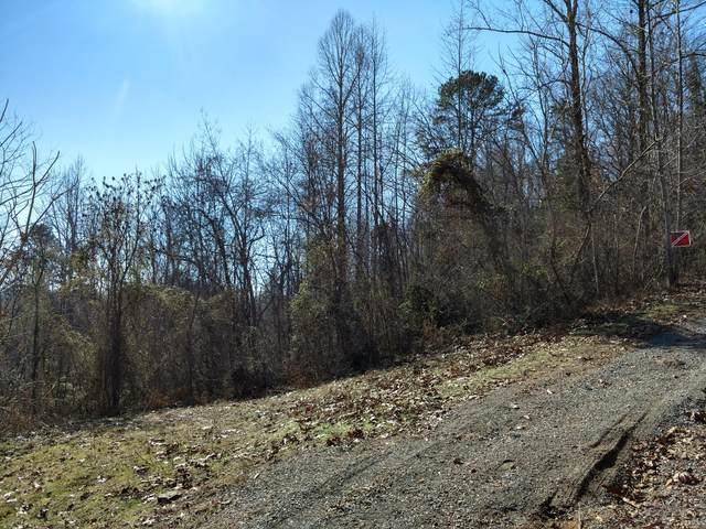 Calvary Rd, New Tazewell, TN 37825 (#1141526) :: Billy Houston Group
