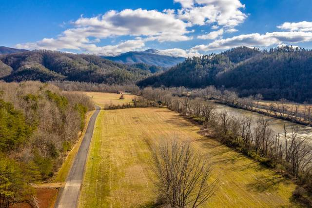 River Rapids Way Lot 34R, Del Rio, TN 37727 (#1141558) :: Cindy Kraus Group | Realty Executives Associates