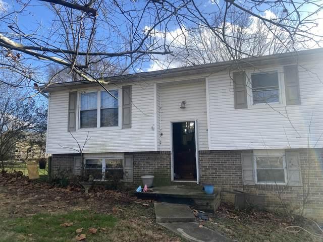 7708 Tina Maria Drive, Corryton, TN 37721 (#1141635) :: Tennessee Elite Realty