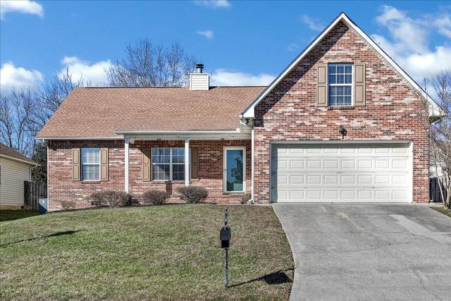 5521 Crooked Pine Lane, Knoxville, TN 37921 (#1141736) :: The Cook Team