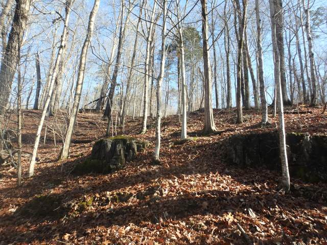 Lot 51 Pinnacle Lane, LaFollette, TN 37766 (#1141751) :: Shannon Foster Boline Group