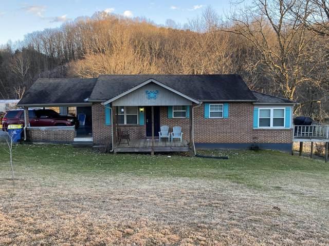 1438 Blockhouse Rd, Maryville, TN 37803 (#1141755) :: Billy Houston Group