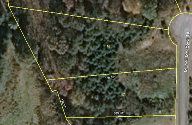 Lot 17&18 Murrell Meadows Drive, Sevierville, TN 37862 (#1141840) :: Billy Houston Group
