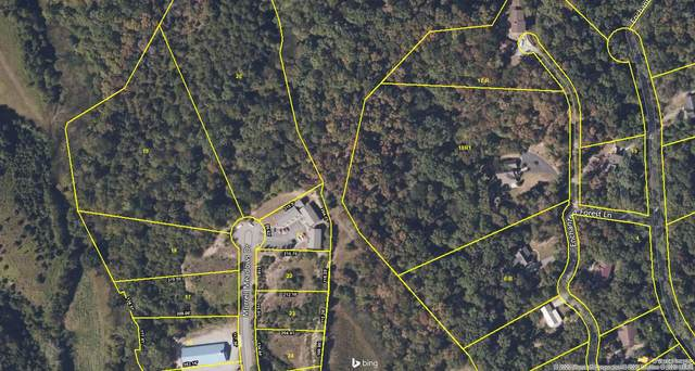 Lot 19 Murrell Meadows Drive, Sevierville, TN 37862 (#1141841) :: Billy Houston Group