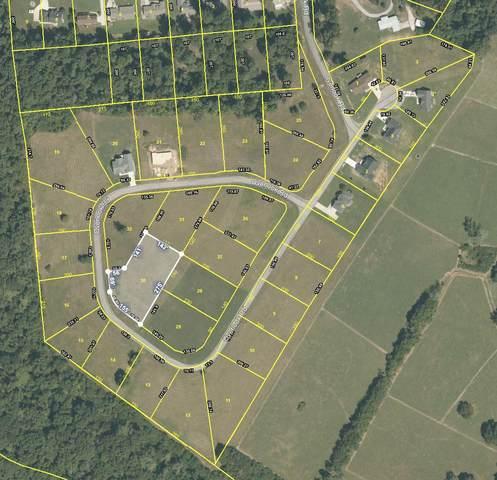 380 Overlook Drive, Dayton, TN 37321 (#1141883) :: Billy Houston Group