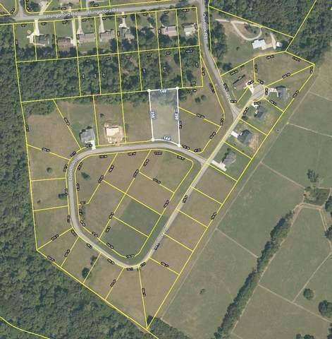 555 Overlook Drive, Dayton, TN 37321 (#1141887) :: Billy Houston Group