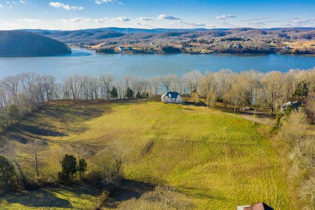 699 De Armond Rd, Kingston, TN 37763 (#1141943) :: Catrina Foster Group