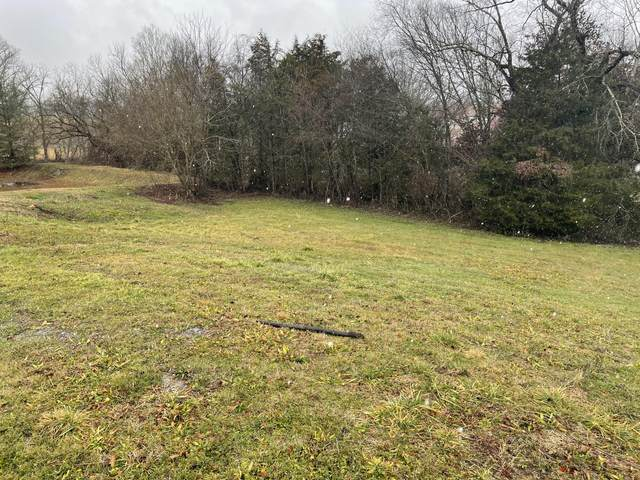 Ally Lane Lot 26, Sevierville, TN 37876 (#1141999) :: Billy Houston Group