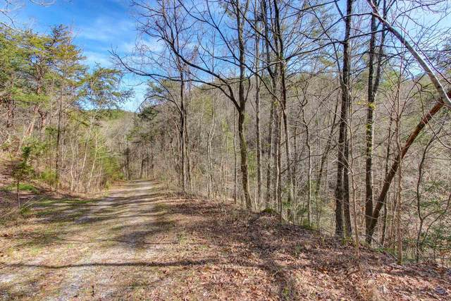 Lot 5 Cowden Spring Way, Sevierville, TN 37876 (#1142080) :: Catrina Foster Group