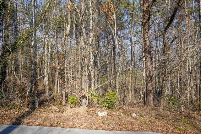Pitch Pine Drive, Powell, TN 37849 (#1142090) :: A+ Team
