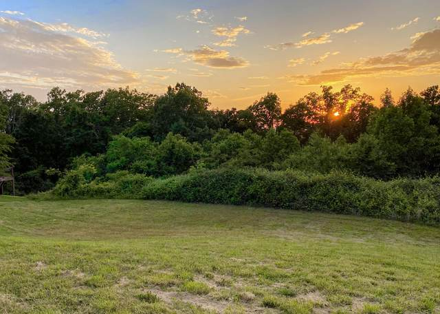 Lot 82 Lenox Hills Subdivision, Cleveland, TN 37312 (#1142109) :: Billy Houston Group