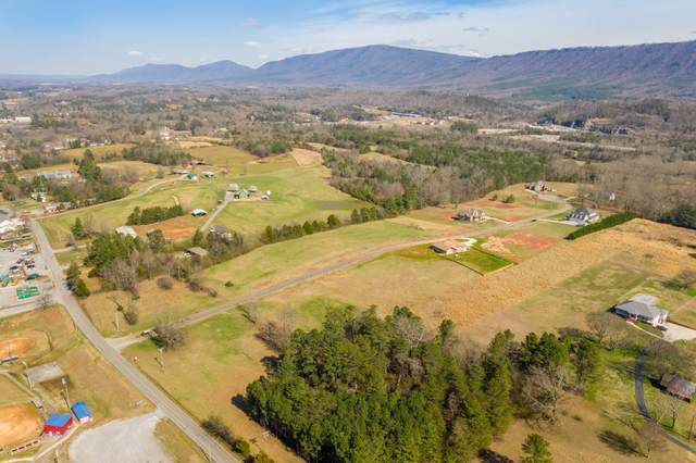 Lot 1 Mountain Meadows, Benton, TN 37307 (#1142299) :: The Cook Team