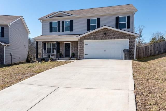 1319 Zamora Lane, Knoxville, TN 37912 (#1142411) :: Realty Executives Associates
