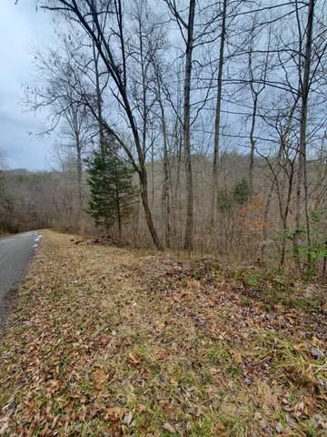 Lot 36&37 Big Creek Rd, LaFollette, TN 37766 (#1142487) :: Billy Houston Group