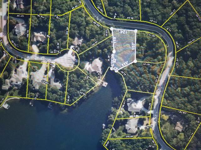 Milnor Terrace, Fairfield Glade, TN 38558 (#1142637) :: Billy Houston Group