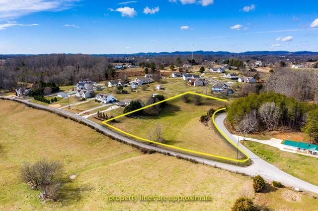 Old Store Rd, Madisonville, TN 37354 (#1142663) :: Billy Houston Group