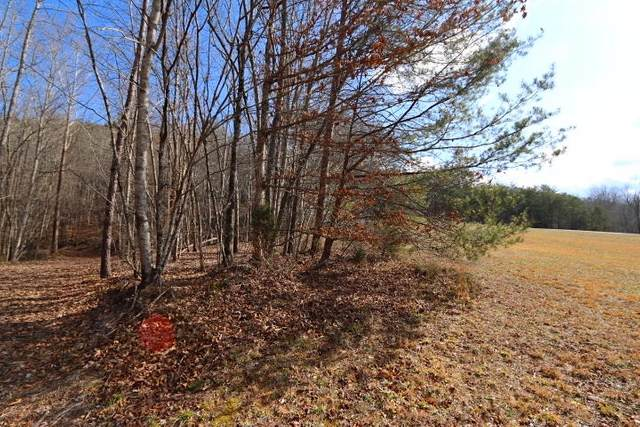 1 Forest View, Tellico Plains, TN 37385 (#1142732) :: Billy Houston Group