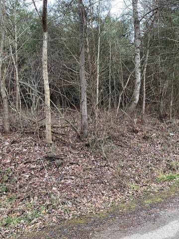 lot 9 Brantley Acres Rd, Speedwell, TN 37870 (#1142812) :: Billy Houston Group