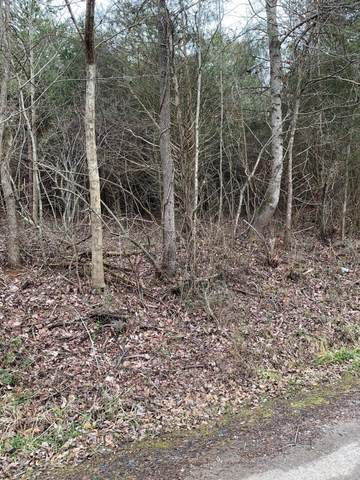 lot 10 Brantley Acres Rd, Speedwell, TN 37870 (#1142814) :: Billy Houston Group
