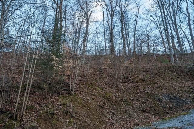 Lot Pt19 Dunn Hollow Rd, Sevierville, TN 37862 (#1143034) :: Billy Houston Group
