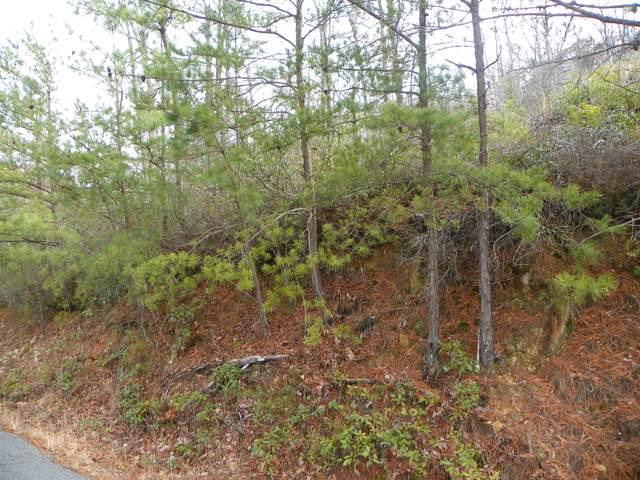 Sanders Lane, Sevierville, TN 37876 (#1143082) :: Tennessee Elite Realty