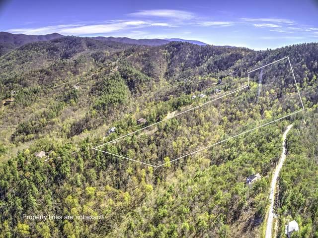 Bear Den Rd, Townsend, TN 37882 (#1143120) :: JET Real Estate