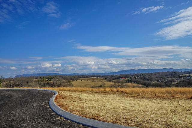 Lot 14 Mountain Vista Lane, Maryville, TN 37804 (#1143167) :: Billy Houston Group
