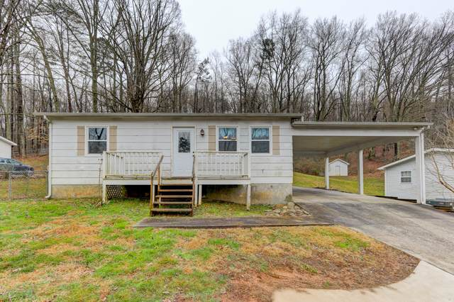 2206 Rifle Range Drive, Knoxville, TN 37918 (#1143368) :: Billy Houston Group