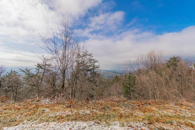 Lot 14 Aintree Drive, Sevierville, TN 37876 (#1143430) :: The Cook Team