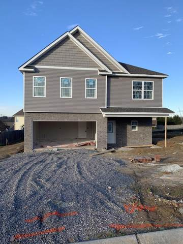 1204 Bastogne Drive, Maryville, TN 37801 (#1143480) :: Billy Houston Group
