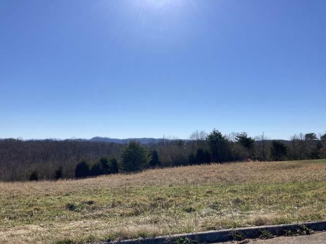 High Ridge Road, Sweetwater, TN 37874 (#1143629) :: Billy Houston Group