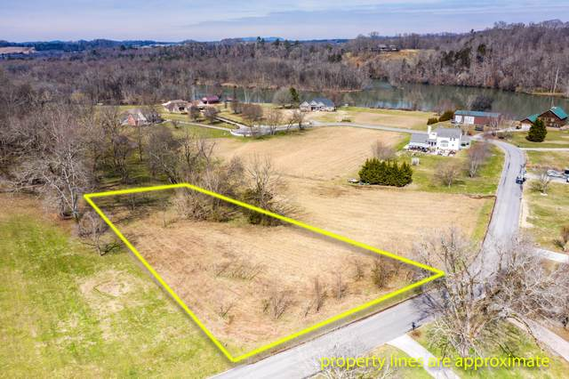 Lot 13 Broad River Lane, Sevierville, TN 37862 (#1143721) :: Billy Houston Group