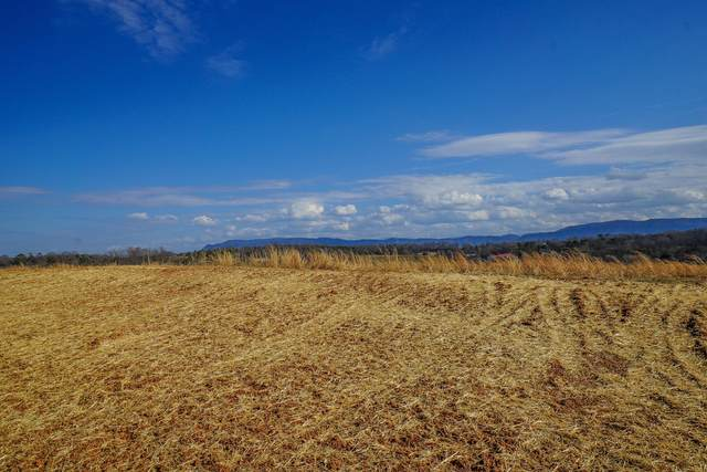 Lot 34 Farm Of The Smokies Way, Maryville, TN 37804 (#1143726) :: Realty Executives Associates