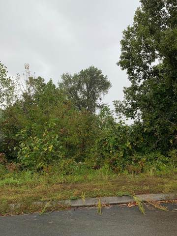 Pheasant View, Rutledge, TN 37861 (#1143799) :: Realty Executives Associates