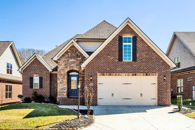 11318 Shady Slope Way, Knoxville, TN 37932 (#1143843) :: A+ Team